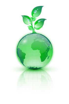 Biofuel-Solution